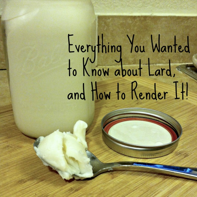 everything lard