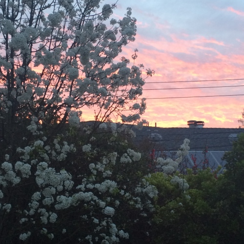 sunrise behind house